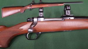 Ruger M77 .223